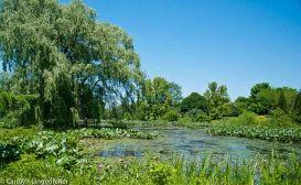 2012_06_arboretum_129