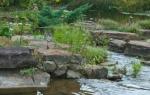 2012_09_arboretum_084