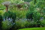 2012_09_arboretum_097