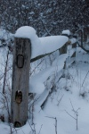 snow-covered fence rail-2