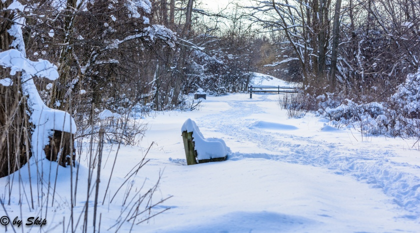 2015_02_02_Chagrin River Park_057