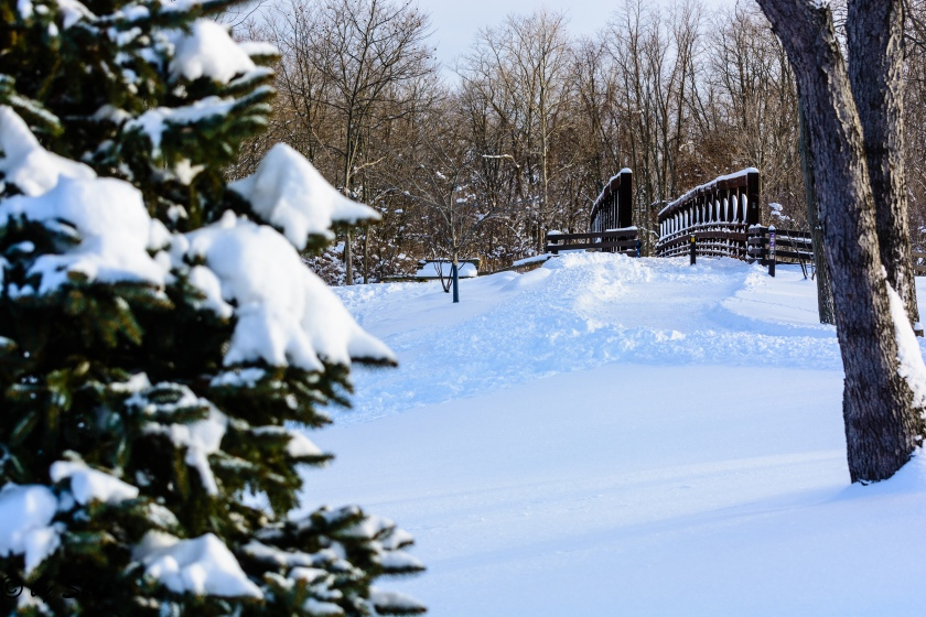 2015_02_02_Chagrin River Park_076