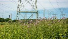 Meadow and power towers