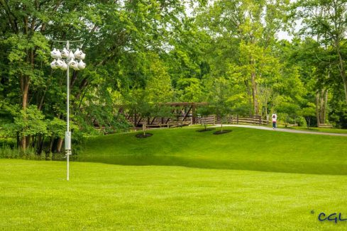 Green, green grass on the playing field