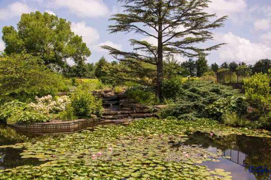 2015_07_02_Holden Arboretum_016