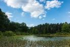 2015_08_24_Holden Arboretum_058
