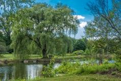 2015_08_24_Holden Arboretum_073