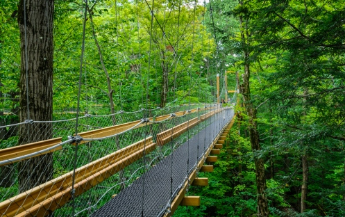 Canopy Walk at Holden Arboretum