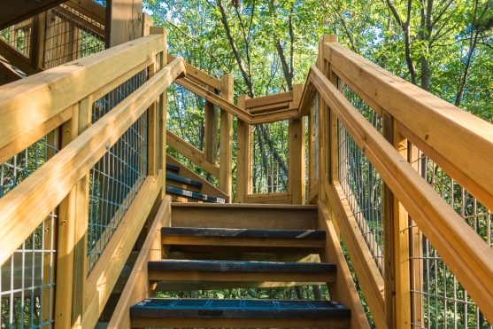 Sturdy stairs with handrails