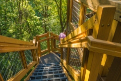 2015_09_16_Holden Arboretum_078