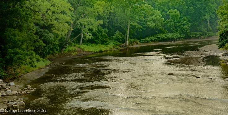 2016_07_05_Trailwalk_Chagrin River Park_0002-Edit