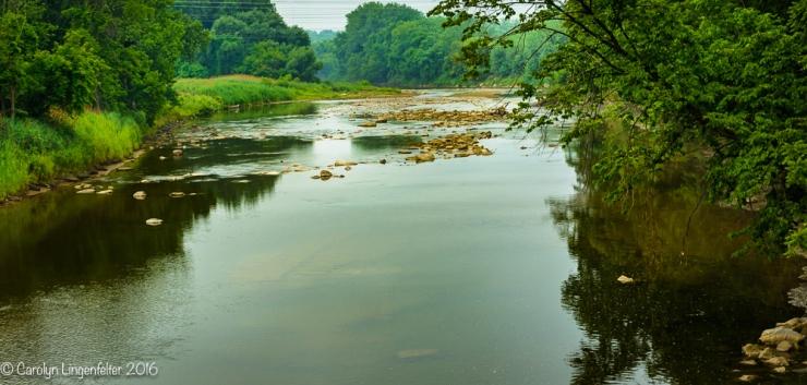 2016_07_05_Trailwalk_Chagrin River Park_0004-Edit