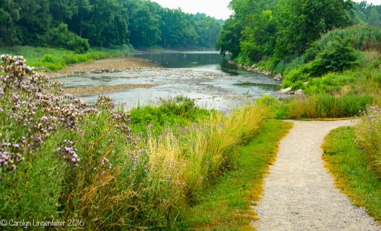 2016_07_05_Trailwalk_Chagrin River Park_0027-Edit