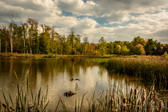 2015_10_08_North Chagrin Reservation_012