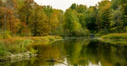 2015_10_08_North Chagrin Reservation_023