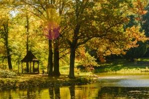 2015_10_12_Holden Arboretum_123