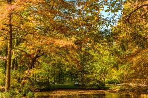 2015_10_12_Holden Arboretum_132