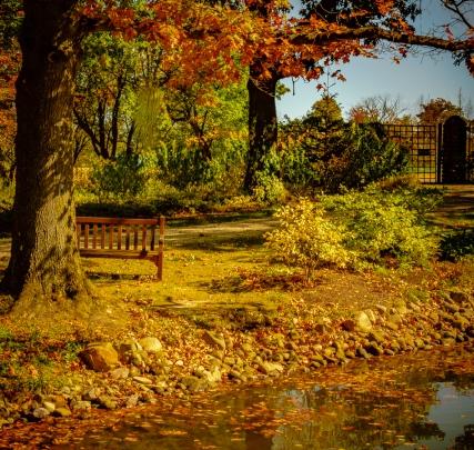 2015_10_12_Holden Arboretum_231