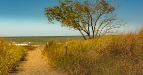 2015_10_15_Headlands Dunes_117
