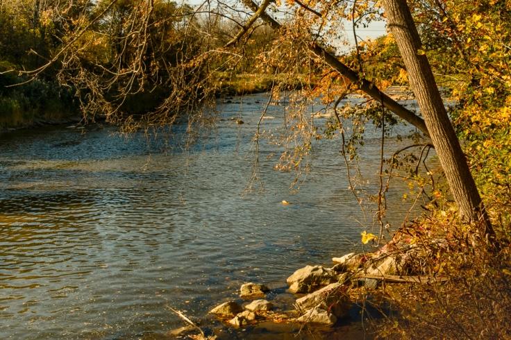 2015_10_20_Chagrin River Park_005