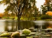 2015_10_22_Holden Arboretum_019