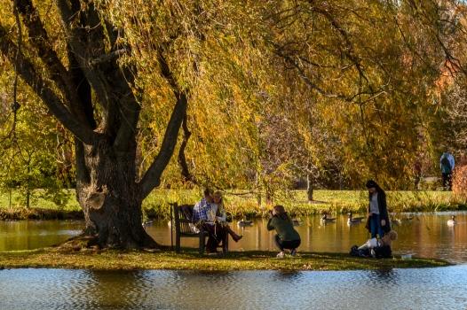 2015_11_01_Holden Arboretum_011