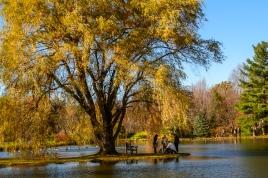 2015_11_01_Holden Arboretum_014