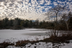 Love that sky over Blueberry Pond.