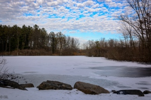 Another view of Blueberry Pond
