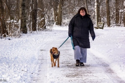 One of many dog walkers I passed on the trail.
