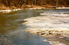 2016_01_30_Trailwalk_Chagrin River Park_0068
