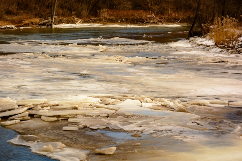 2016_01_30_Trailwalk_Chagrin River Park_0070