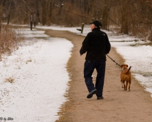 Dog walking has to happen, even on cold, snowy days.