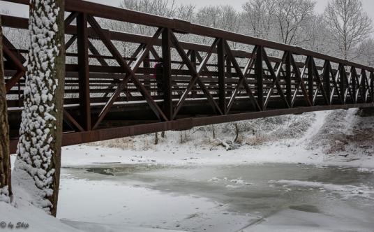 2016_02_16_Trailwalk_Chagrin River Park_0037-3