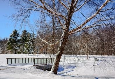 2016_02_18_Trailwalk_Holden Arboretum_0055-Edit