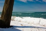 2016_02_19_Trailwalk_Lake Front Park_001-2