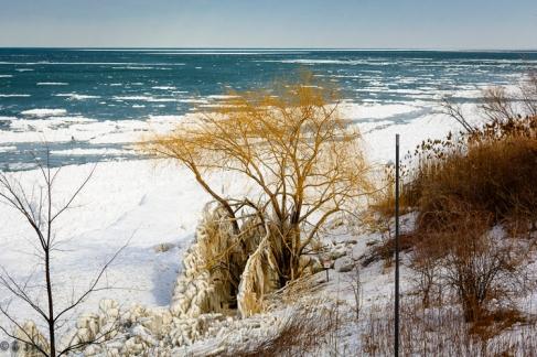 2016_02_19_Trailwalk_Lake Front Park_001-5
