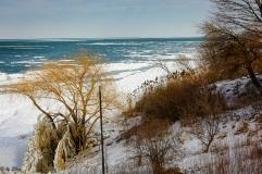 2016_02_19_Trailwalk_Lake Front Park_001