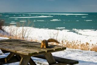 2016_02_19_Trailwalk_Lake Front Park_002