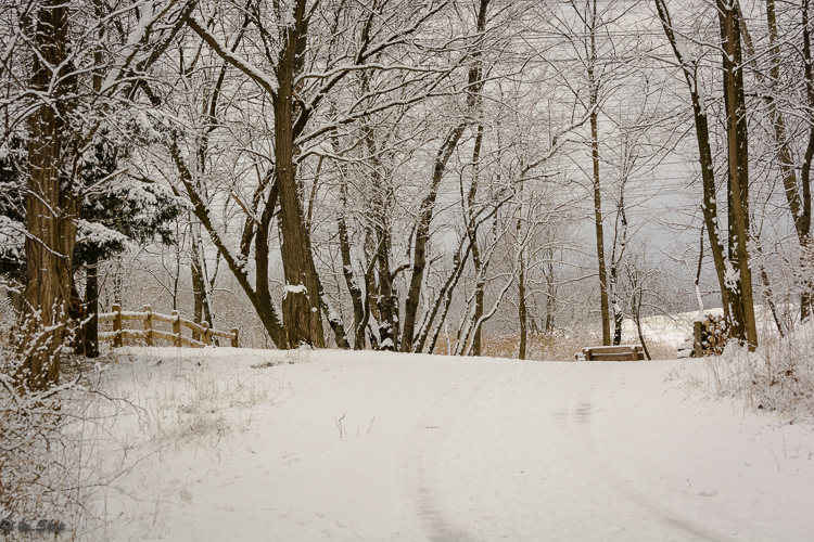 2016_03_04_Trailwalk_Chagrin River Park_0009