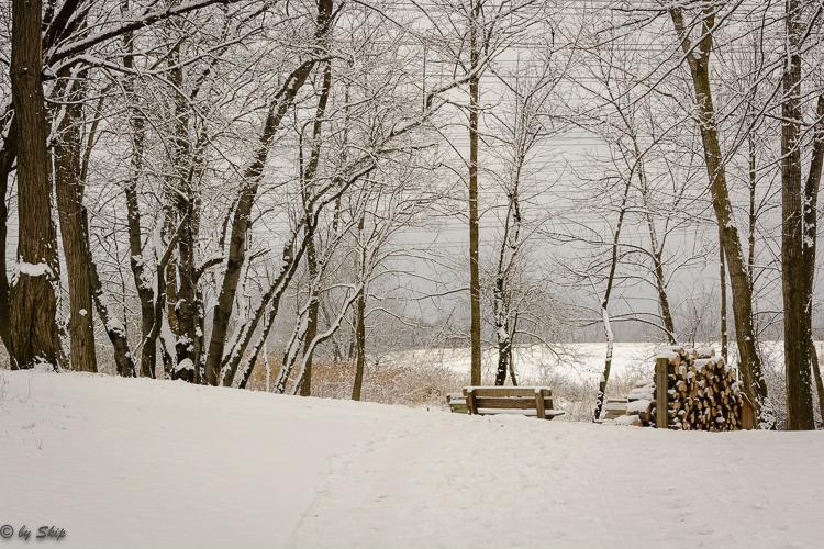 2016_03_04_Trailwalk_Chagrin River Park_0012