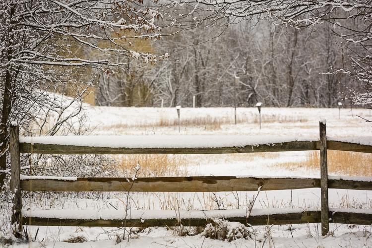 2016_03_04_Trailwalk_Chagrin River Park_0033