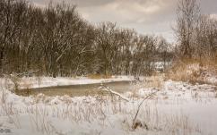 Chagrin River