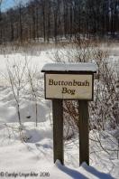 2016_02_18_Trailwalk_Holden Arboretum_0036