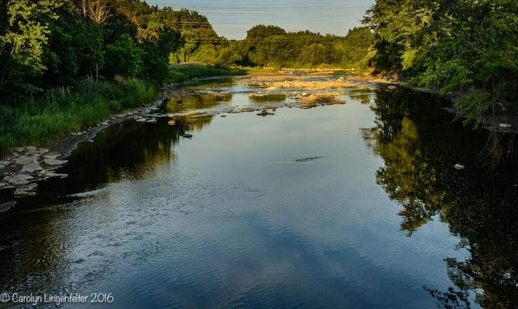 2016_07_03_Trailwalk_Chagrin River Park_0135