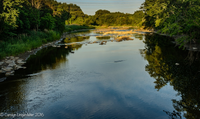 2016_07_03_Trailwalk_Chagrin River Park_0135