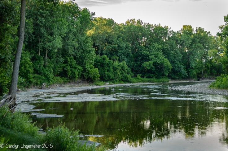 2016_07_03_Trailwalk_Chagrin River Park_0155