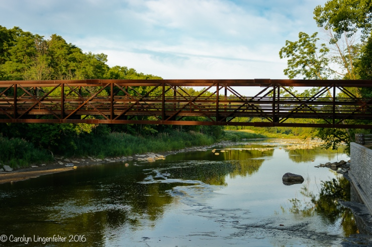 2016_07_03_Trailwalk_Chagrin River Park_0172