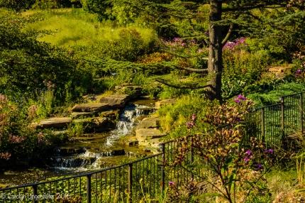 2016_08_29_Trailwalks_Holden Arboretum_0048