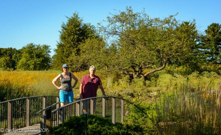 2016_08_29_Trailwalks_Holden Arboretum_0049